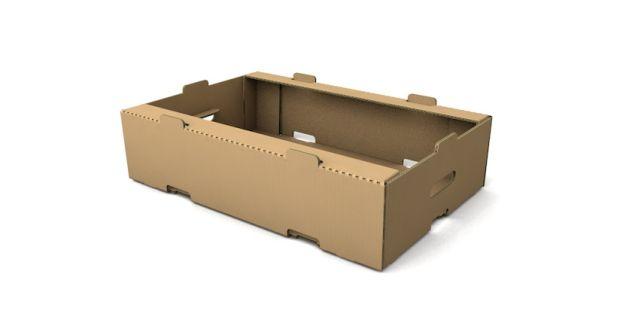 Cardboard Trays